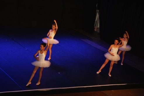 FPR-Danse-2015-26